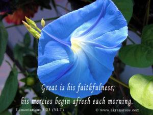 09-sept-lam-3-23-mercies-begin-afresh