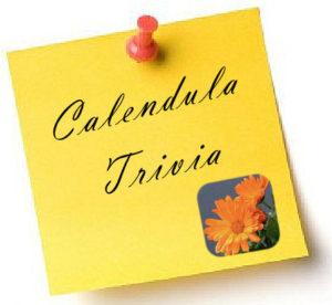 10-october-calendula-trivia